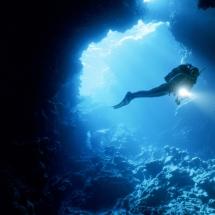 Tropische Meere